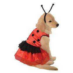 Pet Costume Lovely Ladybug Md-DirtyFurClothing-DirtyFurClothing