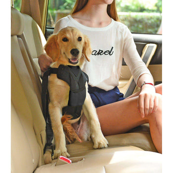 Pet Life Road-To-Safety Pet Dog Car Harness With Detachable Swivel Hook-Pet Life-DirtyFurClothing
