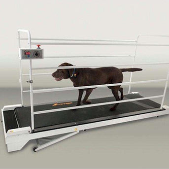 Petrun Pr730 Dog Treadmill-GoPet-DirtyFurClothing
