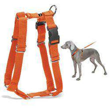 Petsafe Surefit Harness - Blaze (Petite)-DirtyFurClothing-DirtyFurClothing