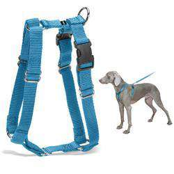 Petsafe Surefit Harness (Petite, Cadet Blue)-DirtyFurClothing-DirtyFurClothing