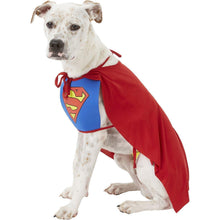 Rubies Classic Without Arms Pet Superman Costume-DirtyFurClothing-DirtyFurClothing