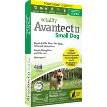 Tevra Brands Llc - Vetality Avantect Ii For Dogs-Tevra Brands Llc-DirtyFurClothing