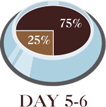 Day 5-6