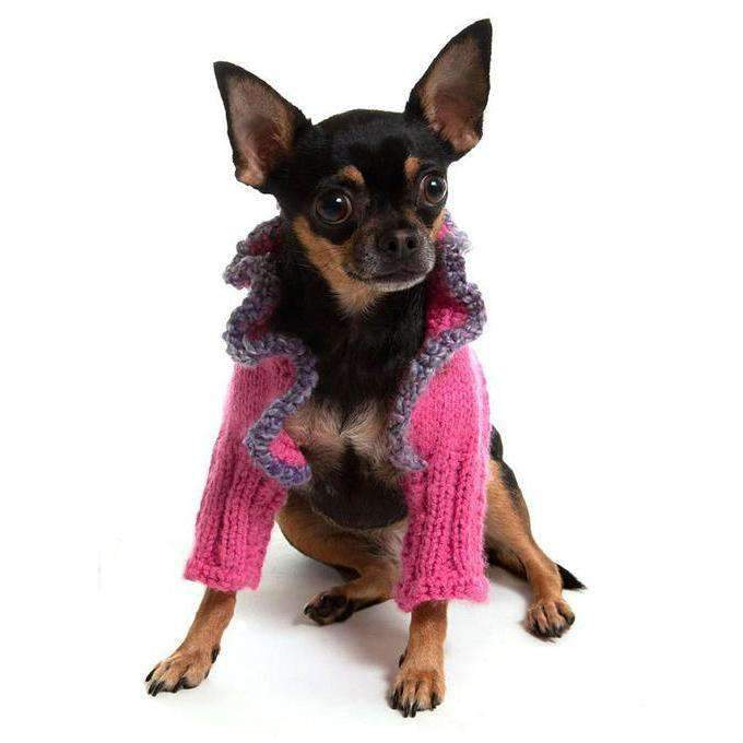 dog in pink sweater