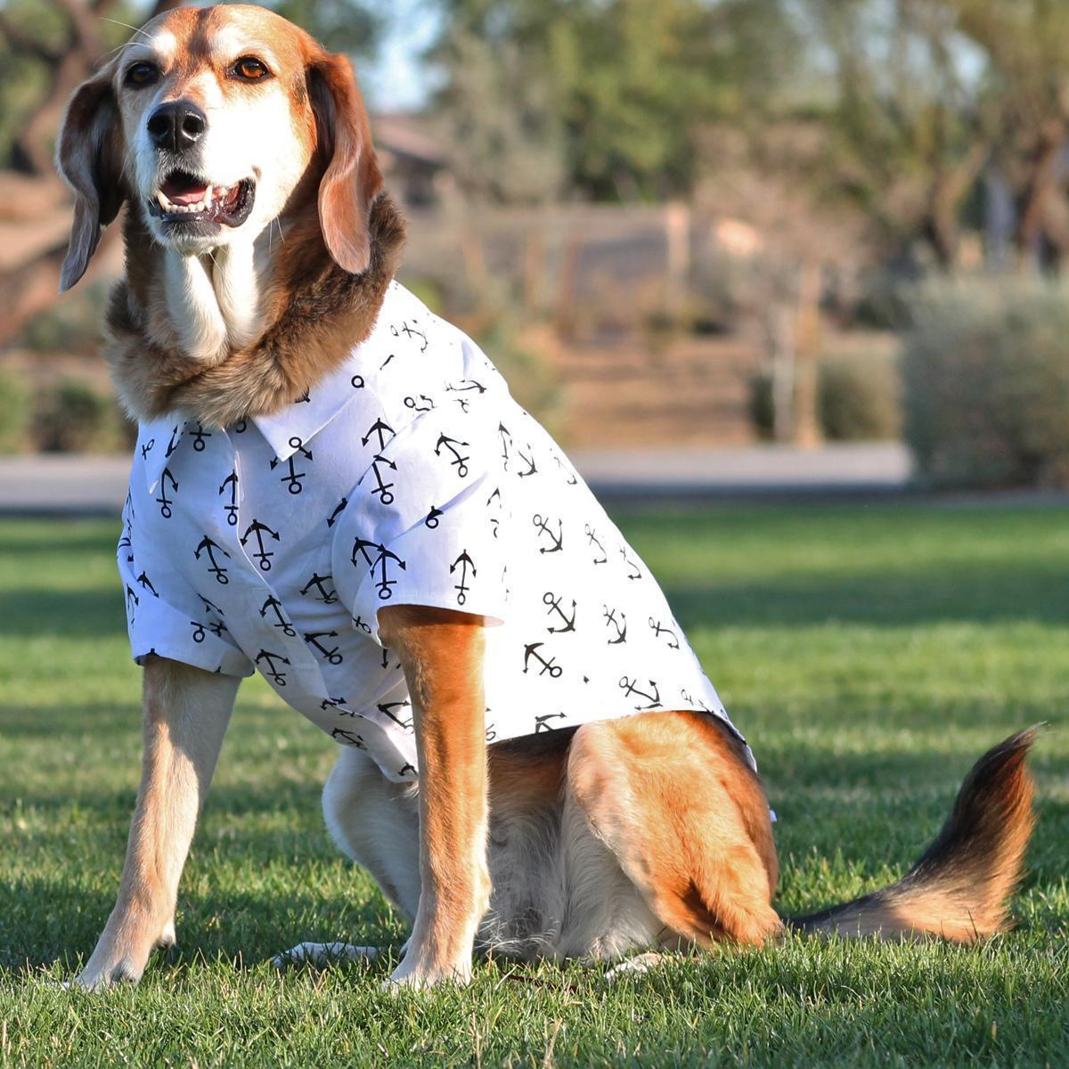 dog in anchor printed shirt