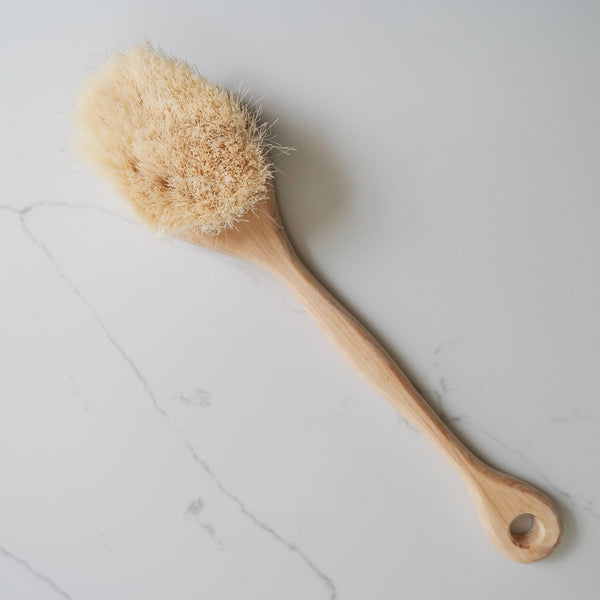Handmade Agave Dry Brush