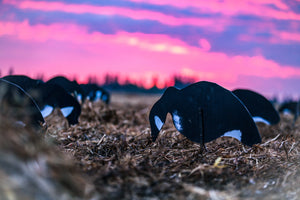 Decoys - What type to use and when
