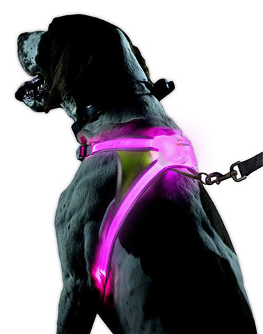 noxgear LightHound – Revolutionary Illuminated and Reflective Harness for Dogs Including Multicolored LED Fiber Optics (USB Rechargeable, Adjustable, Lightweight, Rainproof)