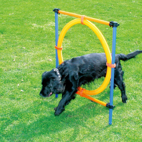 Pet Dogs Outdoor Games Agility Exercise Training Equipment Agility Starter Kit Jump Hoop Hurdle Bar