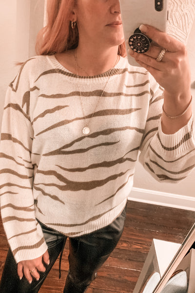 Wild Streak Zebra Striped Sweater