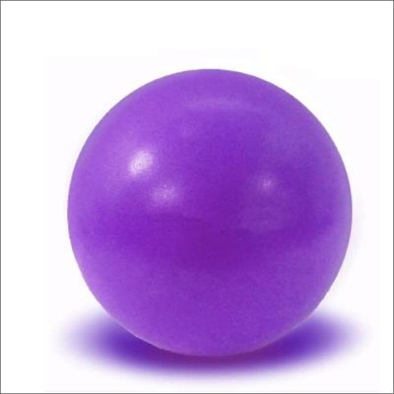 Physical Fitness Yoga Ball - Purple - Fitness Balls