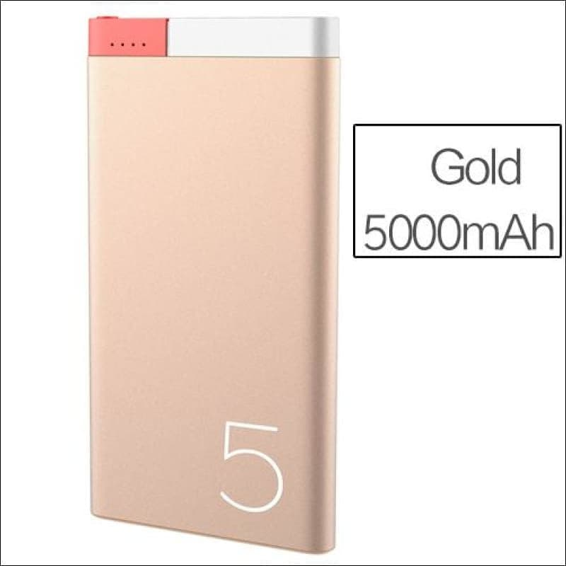 Rock Portable Ultra-Thin Polymer 10000Mah Powerbank - China / Gold 5000 Mah