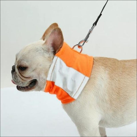 Safe Luminous Pet Dog Reflective Collar Scarf - Pets