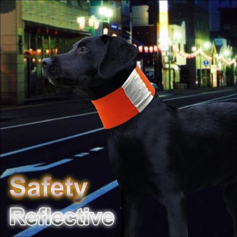 Image of Safe Luminous Pet Dog Reflective Collar Scarf - Pets