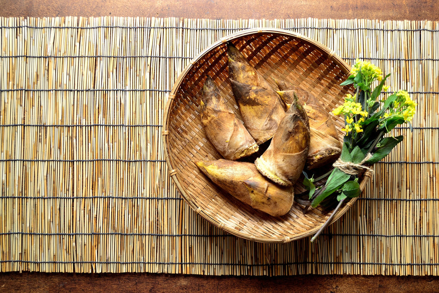 Eating Bamboo Shoots | Is It Safe to Eat Bamboo Shoots?