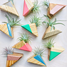 Load image into Gallery viewer, Triangle Air Plant Magnet - Air Plant Included