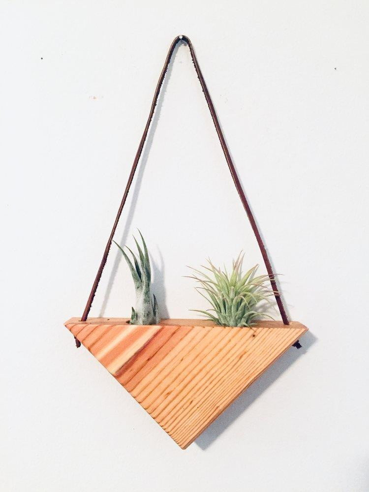 Medium Reclaimed Wood Triangle Air Plant Hanger - 2 Air Plants Included