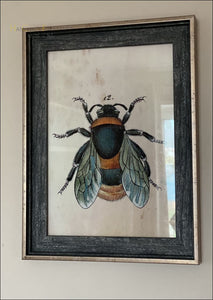 Vintage Bee Framed Prints Hanchics Gifts