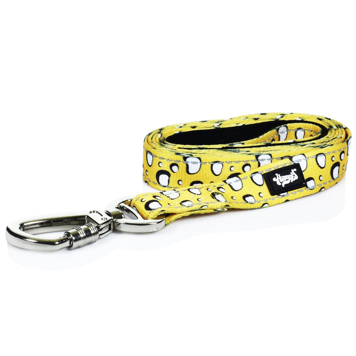 HeadyPet 6 Foot Leash