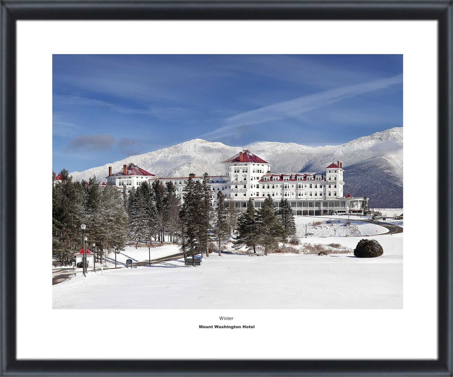 Mount Washington Hotel Collection SPRING 20 x 24