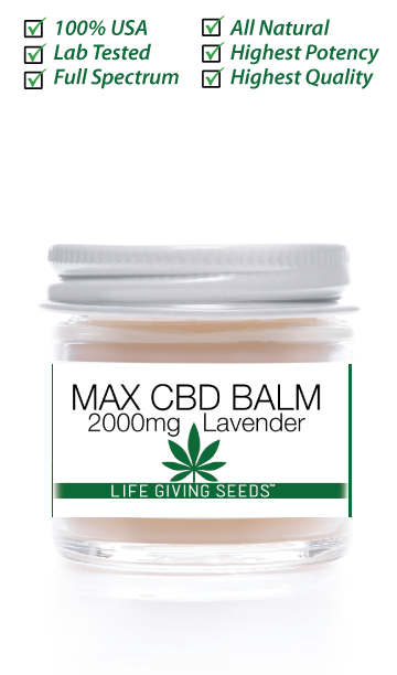 Max CBD FULL Spectrum BALM 2000mg (1oz) LAVENDER