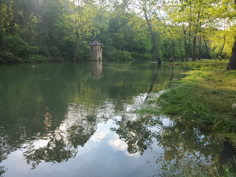Fishing Report 6/5/2020