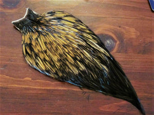 Whiting American Hackle Whole Rooster Cape~Furnace