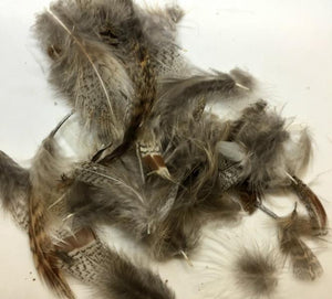 Hareline Dubbin Hungarian Partridge Feathers