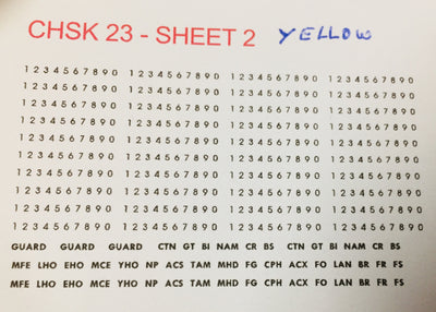 OZZY PASSENGER CAR DECAL : CHSK 23Y  Assorted codes & car number in Yellow CTN, GT, BI, NAM, CR, BS,  MFE, LHO, EHO, MCE, YHO, NP, ACS, TAM, MHO, MHD, FG, CPH, ACX, FO, LAN,  BR, FR, FS, BS, FO, BI, and set of numbers and the word GUARD THREE TIMES.