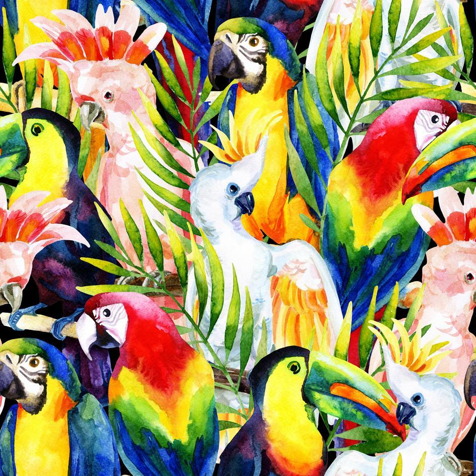 Flock of Tropical Birds Canvas - 100x100cm