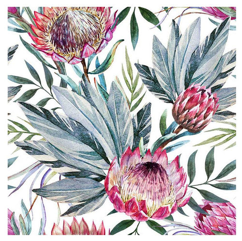 Protea Display White Canvas - 60x60cm