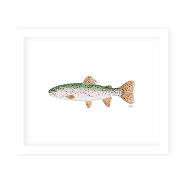Rainbow Trout Art Print