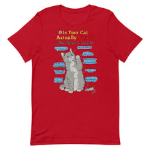 Load image into Gallery viewer, Is Your Cat Actually Satan? T-Shirt