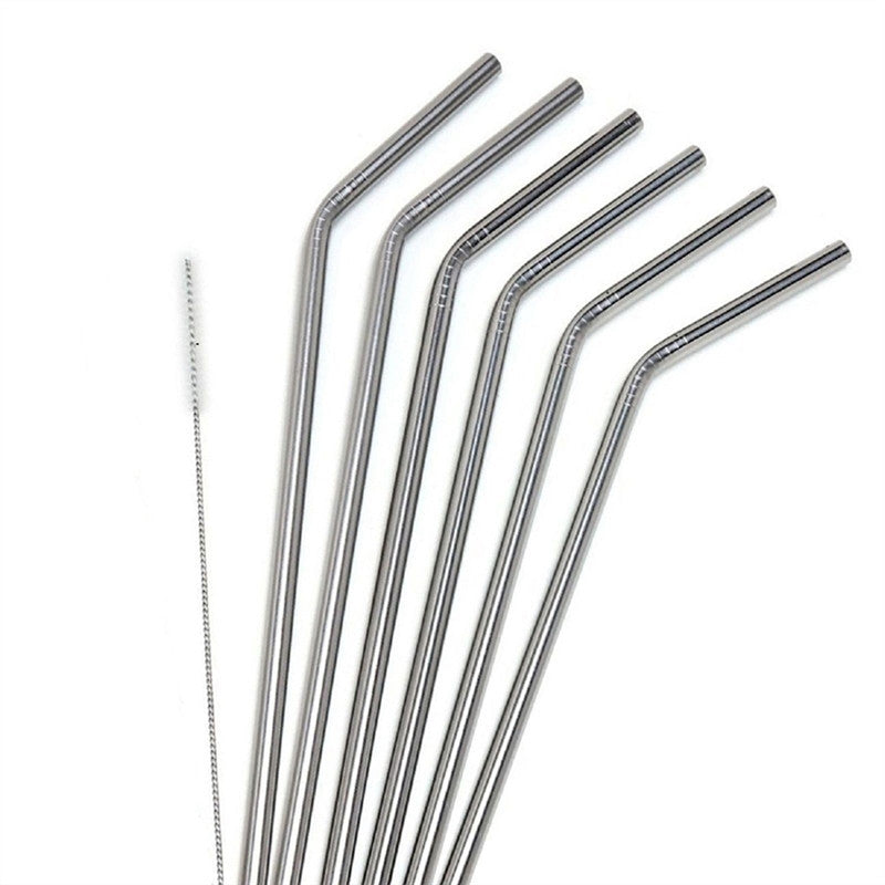 Stainless Steel Reusable Straws (6 pcs)