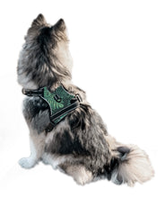 Load image into Gallery viewer, Paw Leaf Cooling Harness - Pomskie Pack Supply