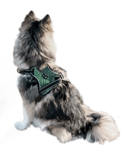Paw Leaf Cooling Harness - Pomskie Pack Supply