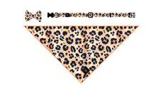 Load image into Gallery viewer, Wild Child Collar + Bow Tie - Pomskie Pack Supply