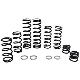 Polaris RZR XP Turbo Dual Rate Spring Kit for Fox Live Valve Shocks (2018-2020)