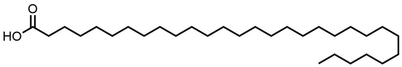 Triacontanoic Acid (C30:0)