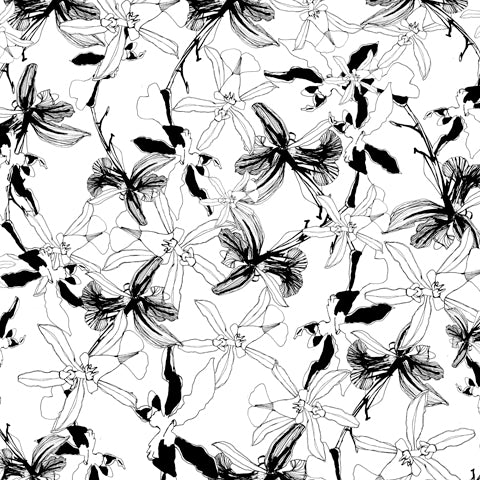 OlaOla black and white floral drawing