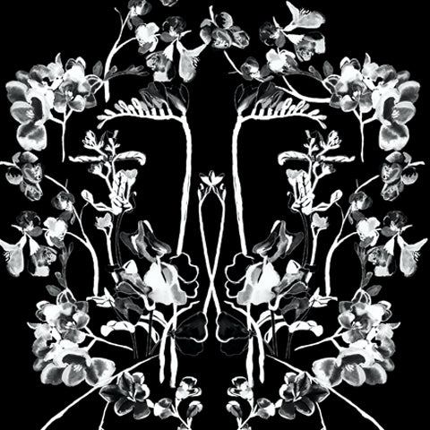 OlaOla x Black Cherry Studios black and white florals pattern