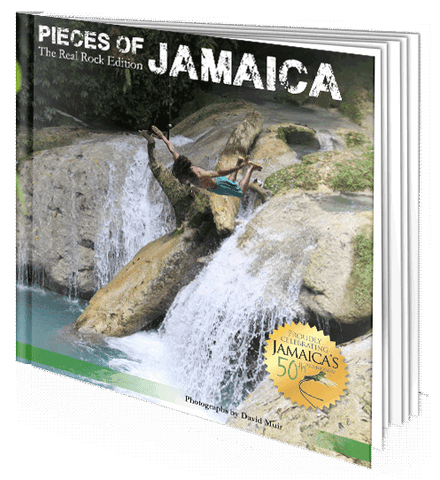 Pieces of Jamaica
