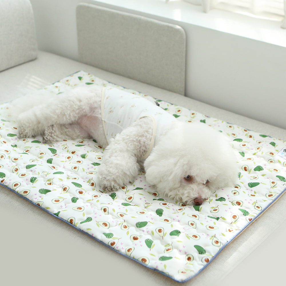 Ice Silk Avocado Cooling Mat for Dog
