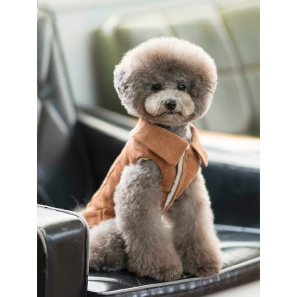 Big Collar Corduroy Dog Jacket