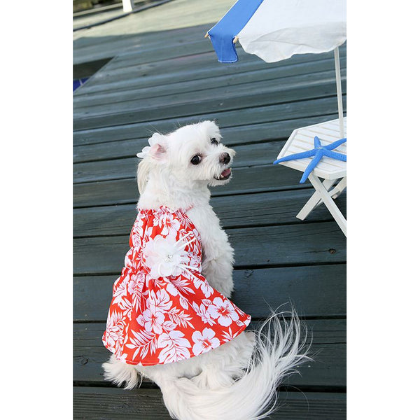 Honeymoon Dog Dress Red