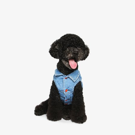 Denim Vest for Dogs