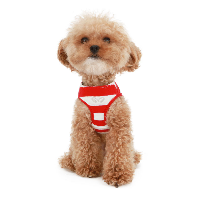 Stripe Dog Harness + Leash