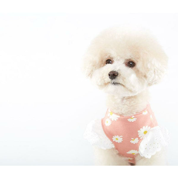 Angel Daisy Dog Tee Pink