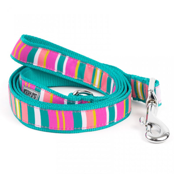 Fiesta Stripe Leash Dog